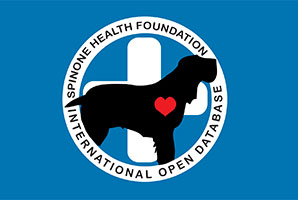 Spinone Health Foundation